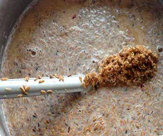 Brettanomyces fermentación