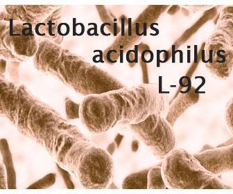Propidades y beneficios de Lactobacillus acidophilus l-92