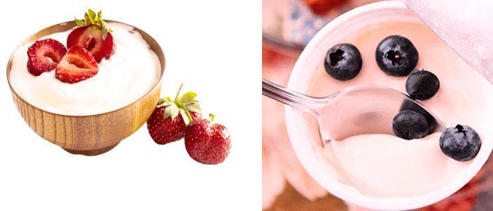 lactobacillus acidophilus en yogurt y alimentos