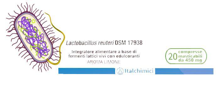 Lactobacillus reuteri dsm 17938