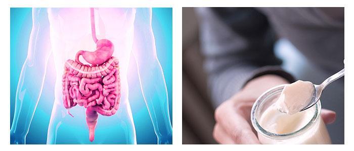 Tratamiento con lactobacillus y probióticos