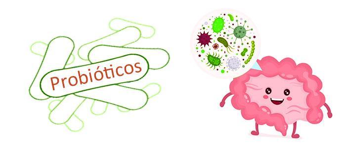Mejores probióticos con lactobacillus