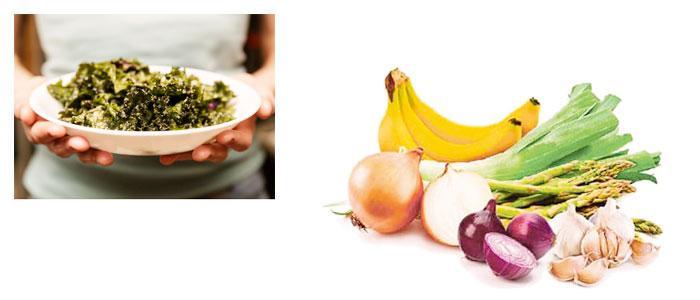 Alimentos probióticos y prebióticos