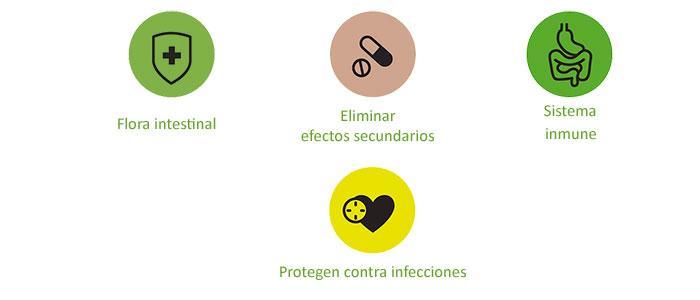 Propidades y beneficios de los probióticos